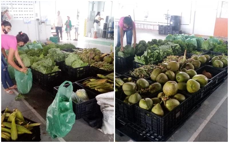 Ingá recebe mais 4 toneladas de alimentos para distribuição às famílias carentes